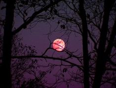 Halloween seems more spooky when it falls on a fall moon. Autumn Aesthetic, Purple Aesthetic, Night Aesthetic, Capa Do Face, Morgana League Of Legends, Angst Im Dunkeln, San Myshuno, Photographie Indie, Bonfire Night