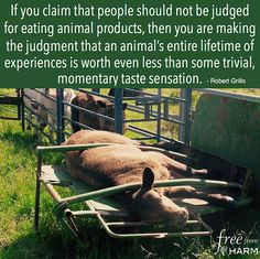 Make the connection to what is REALLY on your plate and what it gave up so you could simply have a 'taste sensation'. Would you feel the same if it was your family or children being eaten?
