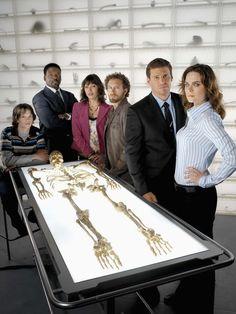 Bones - bones Photo