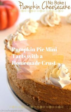 Easy no bake pumpkin dessert-- delicious bite-sized pumpkin pie truffles | No bake fall dessert | No bake Thanksgiving dessert | Pumpkin Pie Truffles by southern blogger Stephanie Ziajka from Diary of a Debutante #pumkin #pumkinpie #usa #hallowen #pumpkinnobake #nobake