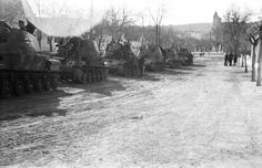 A large group of Nimrod anti aircraft tanks in German service that were built in Hungary under license from Sweden based on a tank design Ww2 Tanks, Tank Design, Panzer, Armored Vehicles, Hungary, Military Vehicles, Wwii, Aircraft, German