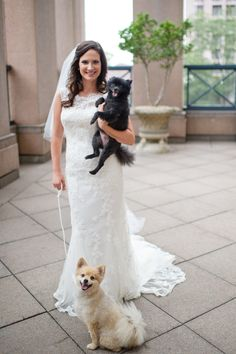Bridal Portrait with Dogs