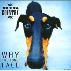 Big Country- Why The Long Face, album sleeve t shirt print- this is what appears on all t shirts Top Albums, Great Albums, Worst Album Covers, Vinyl Store, Bad Album, Sr1, Big Country, Long Faces, Alternative Music