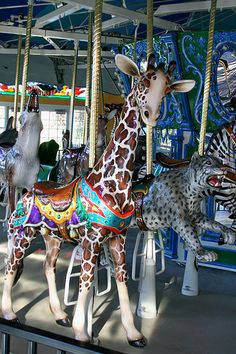 Turtle Back Zoo Carousel Giraffe | Flickr Cool giraffe!! I never saw a giraffe on a carousel before.