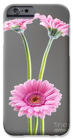 Phone Cases, photo, photography, art, products, design