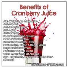 health benefits of cranberry juice Matcha Benefits, Lemon Benefits, Coconut Health Benefits, Safe Cosmetics, Stomach Ulcers, Urinary Tract Infection, Natural Antibiotics, Healthy Oils, Healthy Skin