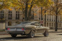 theautobible:    Ford Mustang by MB Photographie on Flickr.
