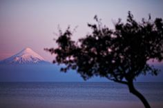 Lago Llanquihue - Puerto Varas Chile Temperate Deciduous Forest, Oh The Places You'll Go, Places To Visit, Virtual Travel, In Patagonia, I Want To Travel, Travel Bugs, Vacation Destinations, Cool Pictures