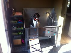 Mud/Dog Room with Stainless Steel Bathing Tub, Faucet with Sprayer, and Retractable Ramp :)