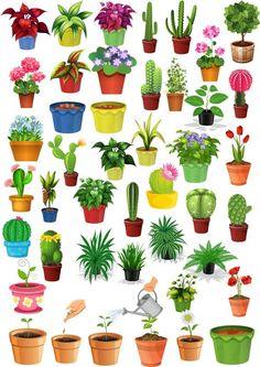 Клипарт Комнатные растения