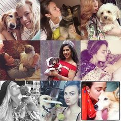 Our Miss USA class of 2016 and their beloved pets. We have a soft spot for beauty queens who are animal lovers and yesterday was #nationalpetday  (Miss MN IN OH VT MT CT OK WI MO) #missusa #missuniverse #instagood #photooftheday #roadtomissusa #cute Own That Crown is a Pageant Marketplace app that connects girls in the pageant industry together based on their location. Find or list your used pageant gowns in the Own That Crown Pageant Resale Section. Find a Pageant Coach or list pageant…