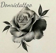 Rose Drawing Tattoo, Realistic Rose Tattoo, Tattoo Sketches, Tattoo Drawings, Stencils Tatuagem, Tattoo Stencils, Flower Tattoo Designs, Flower Tattoos, Apocalypse Tattoo