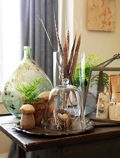 Wonderful, Natural Display- Great for the kids to continually add to. I like that they are confined in glass containers so they don't fly away and the kids would be less inclined to carry them off.