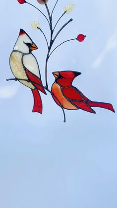 Stained Glass Cardinal, Stained Glass Ornaments, Stained Glass Paint, Custom Stained Glass, Stained Glass Birds, Stained Glass Suncatchers, Stained Glass Designs, Stained Glass Panels, Stained Glass Projects