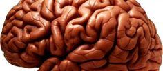 ¿Sabías que el cerebro puede convertirse en un 'canibal'?  http://es.blastingnews.com/curiosidades/2017/07/sabias-que-el-cerebro-puede-convertirse-en-un-canibal-001793603.html