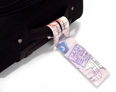 Passport Mighty Tags | QUIRKS