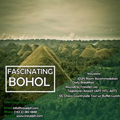 3 DAYS FASCINATING BOHOL TOUR Minimum of 2 persons  For more inquiries please call: Landline: (+63 2)282-6848 Mobile: (+63) 918-238-9506 or Email us: info@travelph.com #Bohol #Philippines #TravelPH #TravelWithNoWorries Bohol Philippines, Travel Companies, Manila, Countryside, Cruise, Tours, Outdoor, Outdoors, Cruises