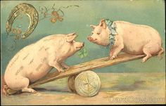Pigs on Seesaw