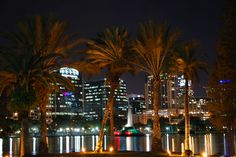 Downtown Orlando, Orlando Florida, Lake Eola, Seattle Skyline, Fountain, Cool Pictures, Old Things, Photos, Travel