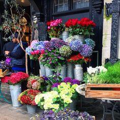 Liberty London! Absolutely love this beautiful shop! 🌸🍂💐🇬🇧💕#libertylondon#uk#londonlife#london#flowershop#fall#autumn#touristing#travelgram#cityscape