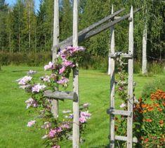 Pergola For Small Patio Garden Arbor, Garden Fencing, Cheap Pergola, Diy Pergola, Green Garden, Tropical Garden, Garden Structures, Outdoor Structures, Pergola Decorations