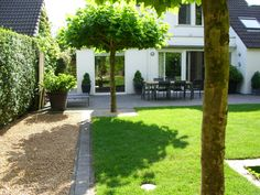 Small neat trees can create a little welcome shade, privacy and create human scale around the terrace