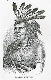 The then famous Native American chief Little Turtle and other chiefs visited Ellicott mills during Christmas week 1807 after . Woodland Indians, My Heritage, Military History, American Indians, Turtle, Miami, Statue, Native Americans, Maryland
