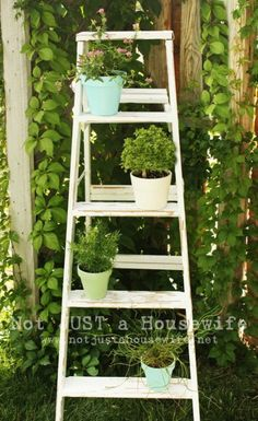 Old Ladder Ideas | How To Reuse A Ladder As A Plant Stand – 15 Ideas | Shelterness