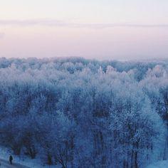 WEBSTA @ edgy_frog - #vscocam #vsco #vscorussia #frost #hoarfrost #morning #sunrise