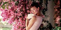 El guion de Audrey Hepburn en Desayuno con diamantes alcanza 721.000 euros