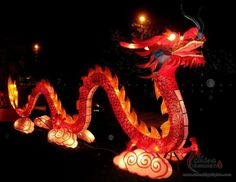 The Mooncake Festival, Moonstruck, etc… Lantern+Festival Chinese Party, Asian Party, Chinese Theme, Chinese New Year, Chinese Lantern Festival, Chinese Festival, Cake Festival, Dragons, Prom Themes