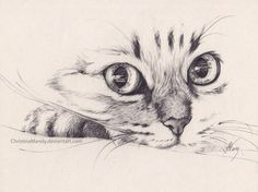 Imagen de cat, pencil, and drawing