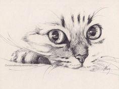 Imagen de cat, pencil, and drawing