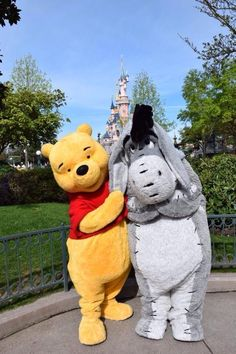 Winnie the Pooh & Eeyore in front of the Sleeping Beauty Castle