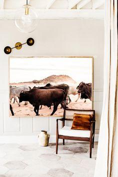 Namibia Droving Cattle Photographic Print | Extra Large Size | © Kara Rosenlund