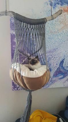 Macrame cat hammock   - Laurène Vialle -  -  Macrame cat hammock    Macrame cat hammock