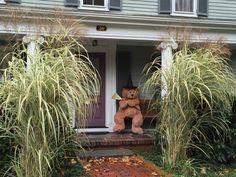 怖くないハロウィン装飾