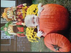 Baby pumpkin photo idea Baby Pictures, Baby Photos, Pumpkin Photos, Baby In Pumpkin, Portrait Photography, Photography Ideas, Little Man, Make It Yourself, Portrait Ideas