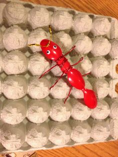 Insect Project from recycled materials