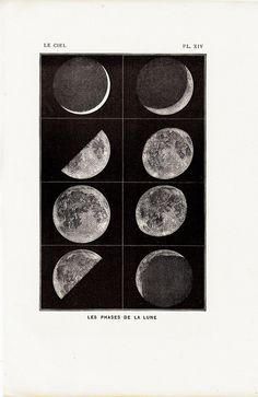 I would love a poster sized print of this please. The phases of the Moon. Laboratory lessons in general astronomie nemfrog Photo Wall Collage, Picture Wall, Collage Art, Room Posters, Poster Wall, Photowall Ideas, You Are My Moon, Plakat Design, Photocollage