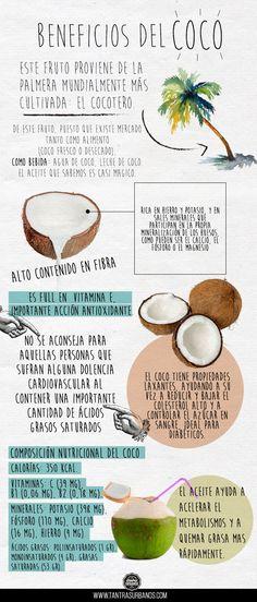 infografia-coco