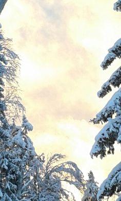 Taivalkoski, keväinen auringonlasku 30.1.16