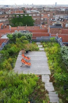 Urban Garden Urban Retreats: 10 Dreamy Rooftop Gardens - There's something so beautiful and enticing about a roof garden — a little oasis in the middle of the city, a little spot of green in the midst of the concrete jungle Rooftop Terrace, Terrace Garden, Garden Spaces, Garden Plants, Terrace Ideas, Potager Garden, Terrace Design, Veg Garden, Garden Oasis