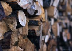 A pile of wood for #winter #firewood #woodpile