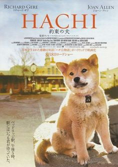 Directed by Lasse Hallström. With Richard Gere, Joan Allen, Cary-Hiroyuki Tagawa, Sarah Roemer. A college professor bonds with an abandoned dog he takes into his home. Sarah Roemer, Joan Allen, Richard Gere, Film Movie, Movies Showing, Movies And Tv Shows, Hachi A Dogs Tale, Little Dorrit, Animales