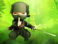 ECOLE DES NINJAS: Bienvenue dans l'école des Ninjas! Après l'initiation à la vie des Ninjas, aidez notre Senseï, recruteur de Ninjas, à retrouver l'anti-venin qui permettra de sauver les futurs apprentis ninjas contre les forces du mal.