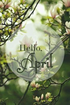 75 Hello April Quotes & Sayings Seasons Months, Days And Months, Seasons Of The Year, Months In A Year, Four Seasons, 12 Months, Neuer Monat, New Month, Birth Month