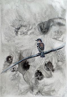 Chaffinch - buy bird art by Liffey Joy Chaffinch, Buy Birds, Mixed Media Painting, Bird Art, Figurative Art, Online Art Gallery, Watercolor Paper, Paper Art, Original Artwork