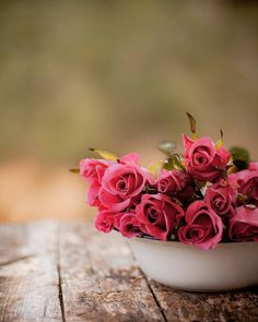 """veverybeautiful: """" southern_girl_dreaming• """" Beautiful Flower Quotes, Amazing Flowers, Beautiful Roses, Love Rose Flower, Pretty Flowers, Pink Flowers, Rose Flower Wallpaper, Flower Backgrounds, Beautiful Flower Arrangements"""