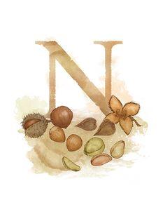 Letter N Nut Nature Theme Alphabet Art Decor by LaPetiteMascarade Alphabet Art, Alphabet And Numbers, Botanical Illustration, Graphic Design Illustration, Nature Letters, Letter N, Letter Board, Decoupage, Shape Crafts